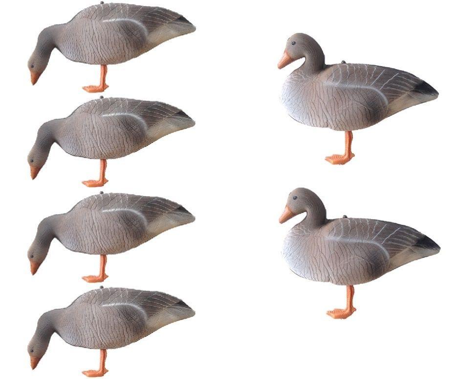 Full Body Goose Decoys GREYLAG Geese Decoy GREYS Shooting Decoying FLOCK  FOAMIES